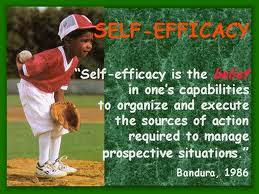 perceived social self-efficacy scale pdf