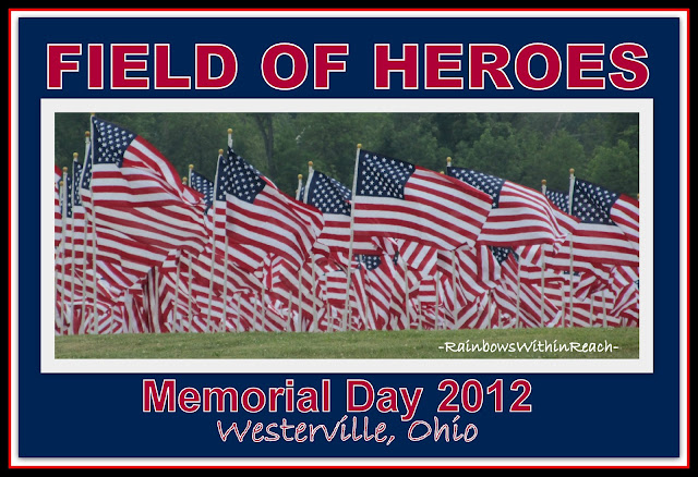 photo of: Field of Heroes: American Flags honor Memorial Day
