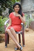 Samyuktha Hornad Glam pics-thumbnail-7