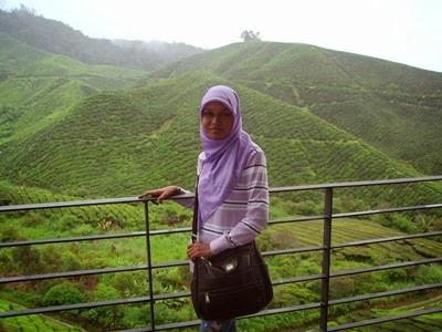 a-boh+tea+plantation.jpg