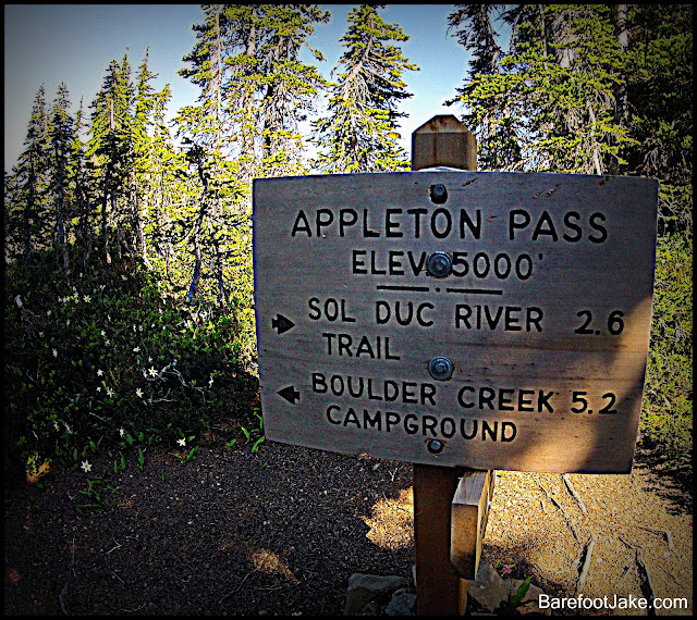 Appleton Pass