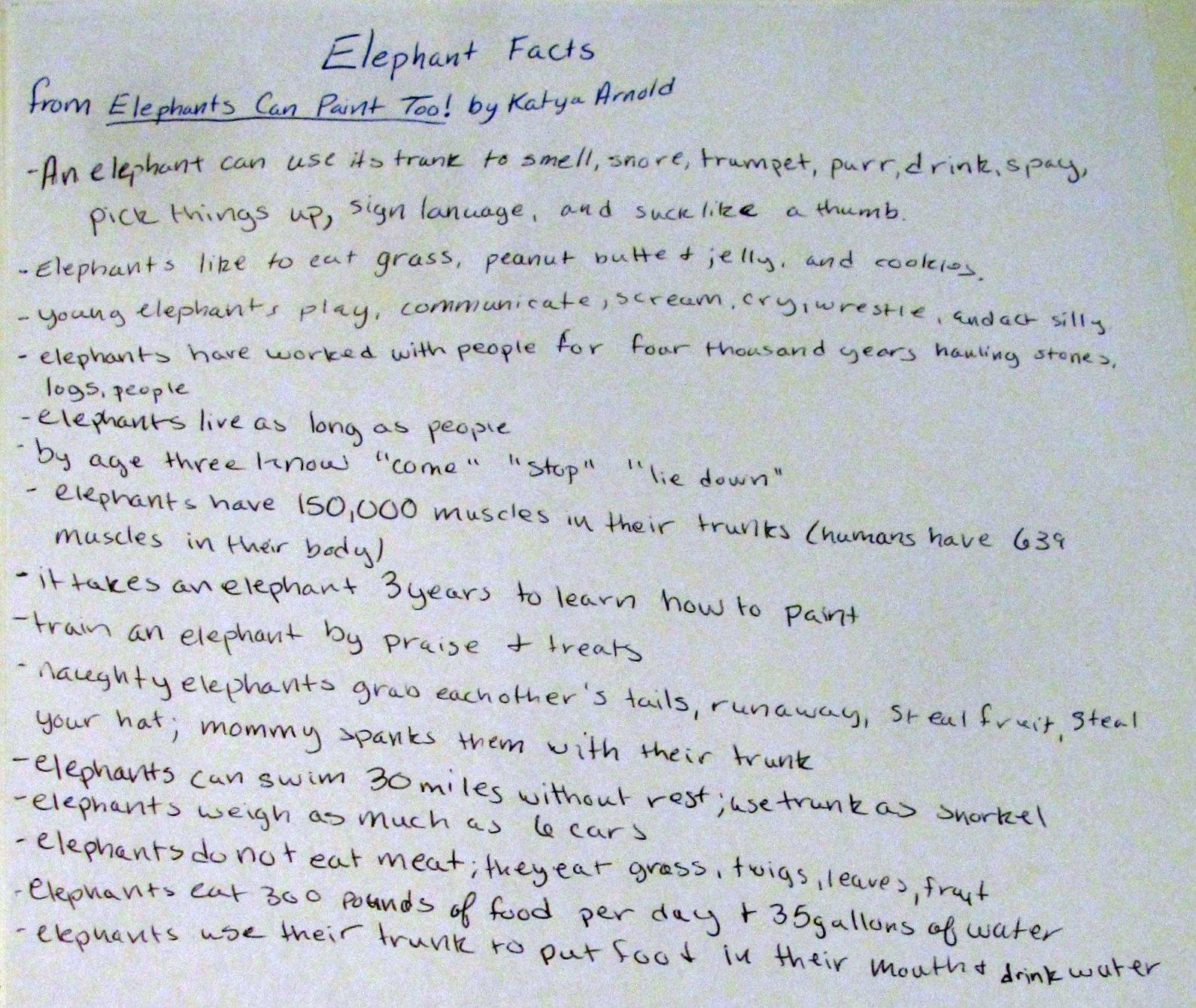 nirvana homeschooling elephant study using elephants can paint too