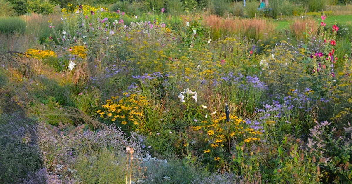 Its all in the mix..... resources for understanding Mixed Planting.