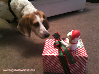 My Dog Valentino and Christmas Squeaker Toys