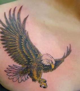 Bird tato altavistaventures Gallery