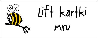 http://diabelskimlyn.blogspot.com/2015/03/lift-kartki-mru.html