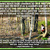 Homeschool Nature Study & Pope Quote!