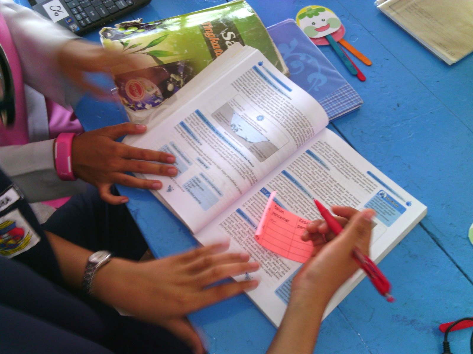 PROFESSIONAL LEARNING COMMUNITIES PLC SAINS