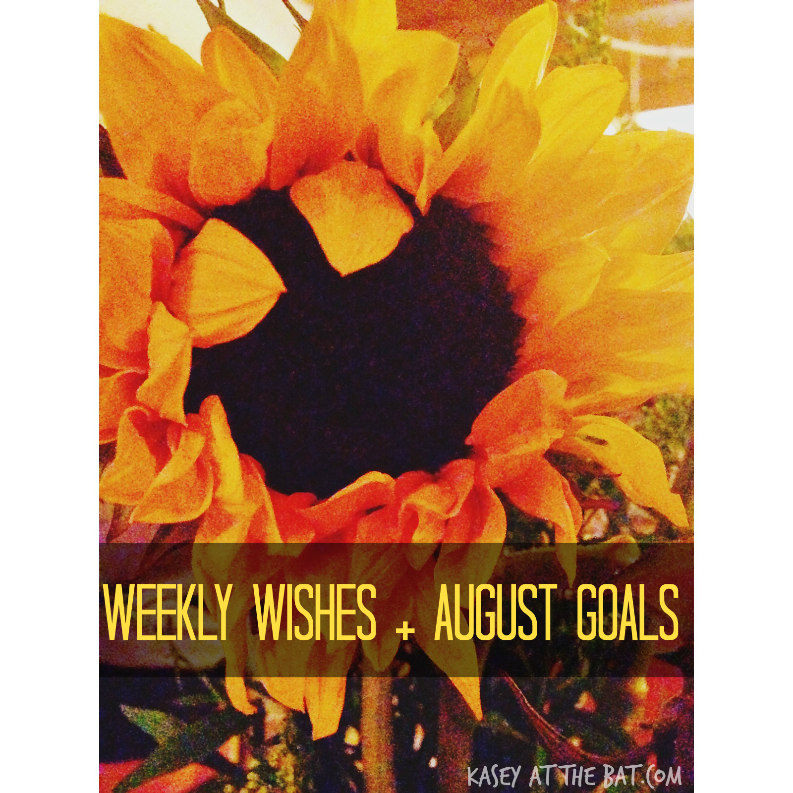 weekly wishes + august goals!