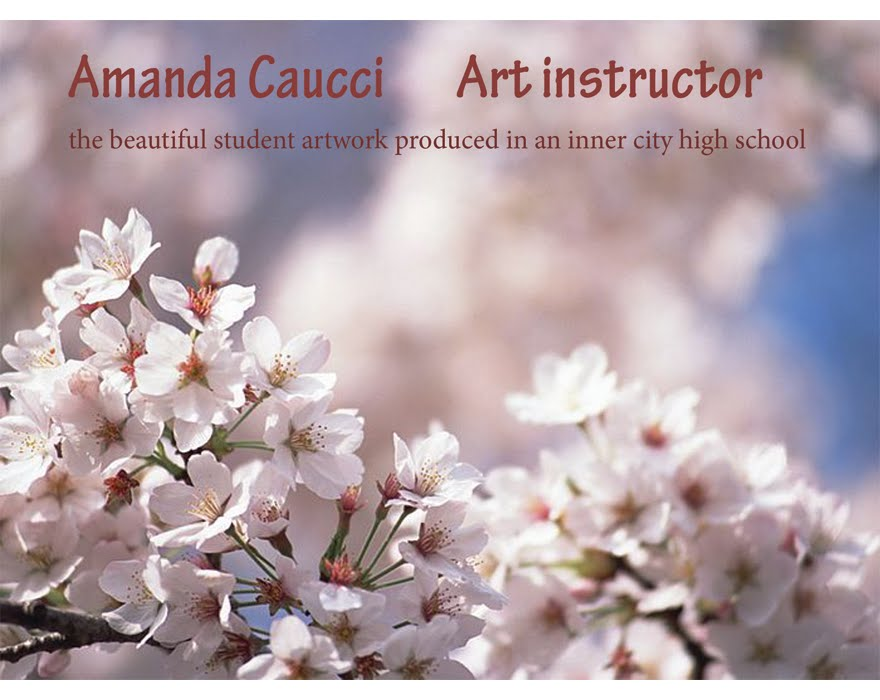 Amanda Caucci                       Art Instructor