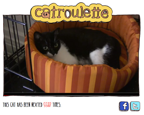 catroulette