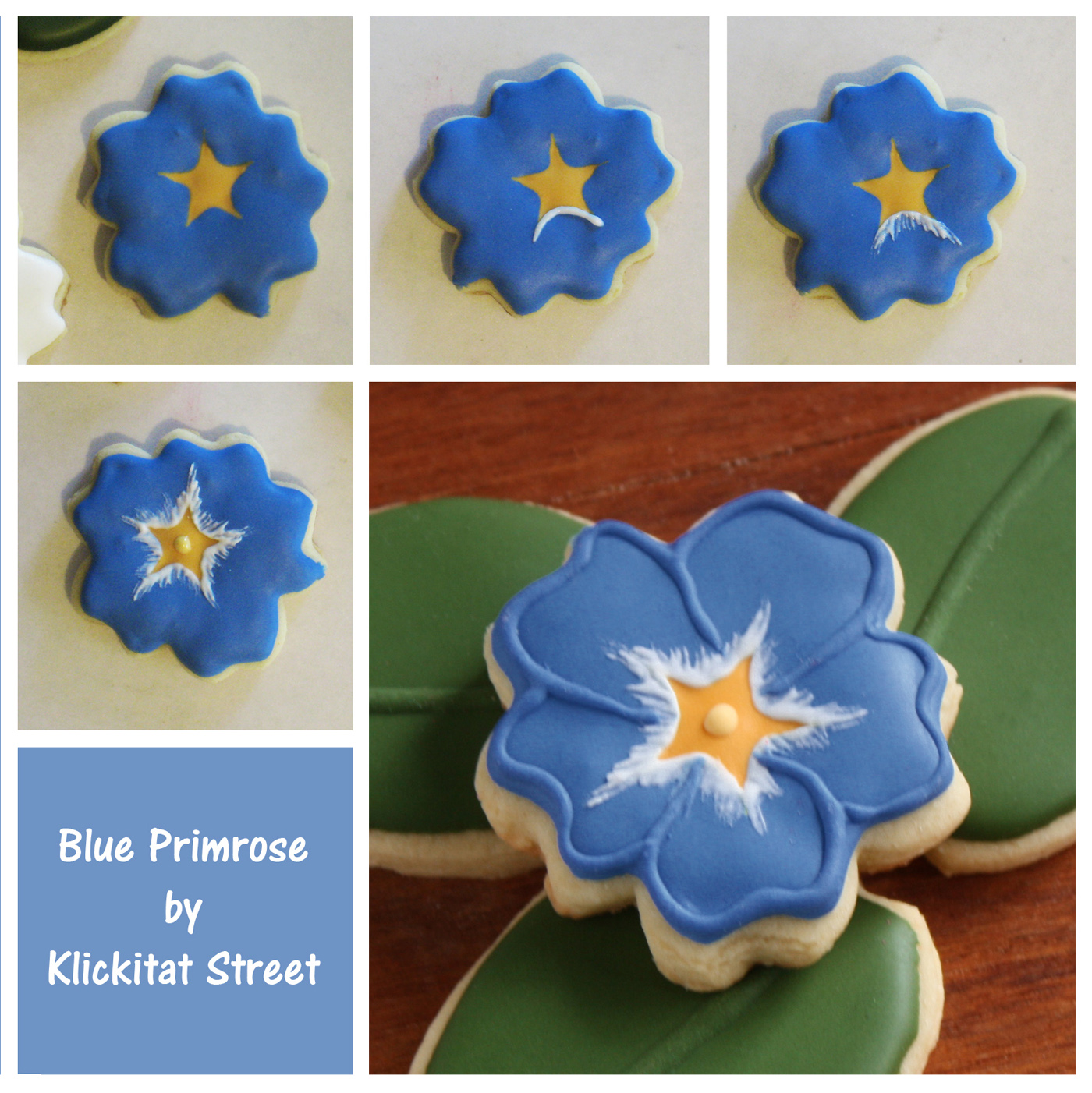 decorated sugar cookies iced to look like blue primrose flowers by Klickitat Street