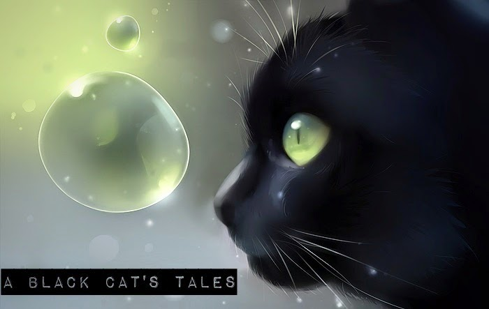 A Black Cat's Tales
