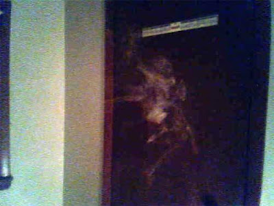 Real Ghost Photo: Ghost on the Mirror and the Door