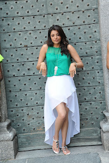 Actress Kajal Agarwal Picture Gallery in Sarocharu Telugu Movie  0029.jpg
