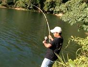 Gila Mancing Dapat Ikan Gurami Besar