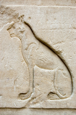 Engraving of a cat on the outer walls of an ancient temple at Edfu