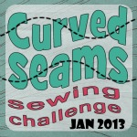 Curved Seams Challenge Homepage
