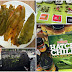 Cooking and Food Recipes: All about Hatch chiles  - UPDATE!!