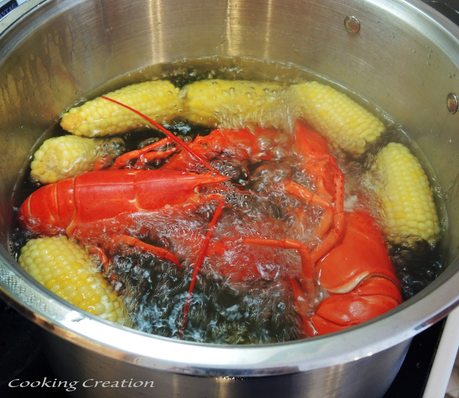 Cooking Creation: Boiled Lobster & Corn on the Cob