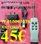 PET TRAINER Nº2 IMPORTACION 45€