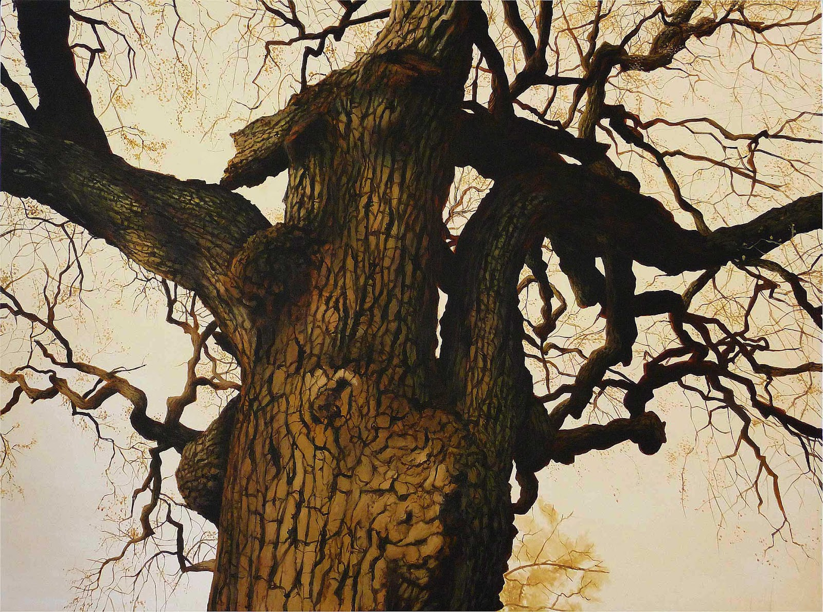 Sean hargreaves designs old tree and field oil paintings for How to paint a tree