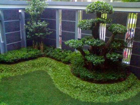 Jasa tukang taman | dekorasi taman | saung gazebo | rumput | suplier tanaman hias | pohon pelindung