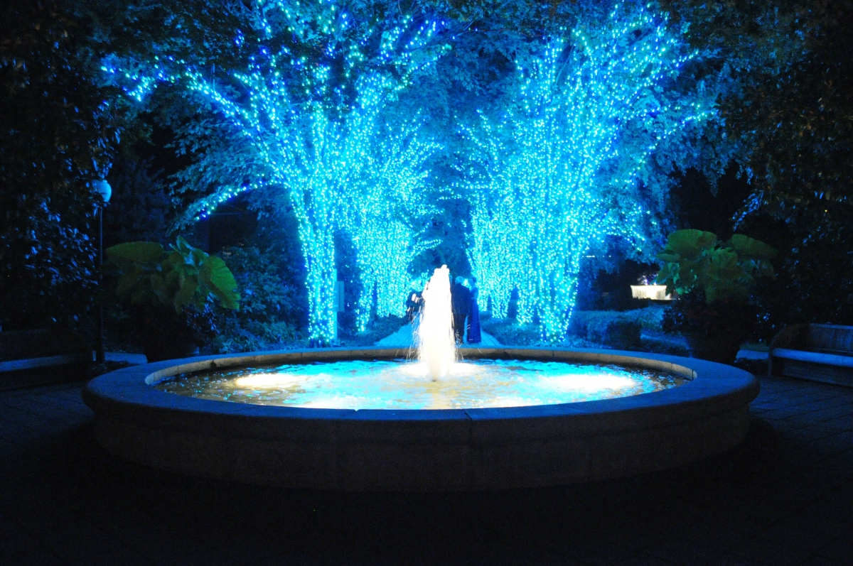 Atlanta Botanical Garden   Garden Lights Holiday Nights