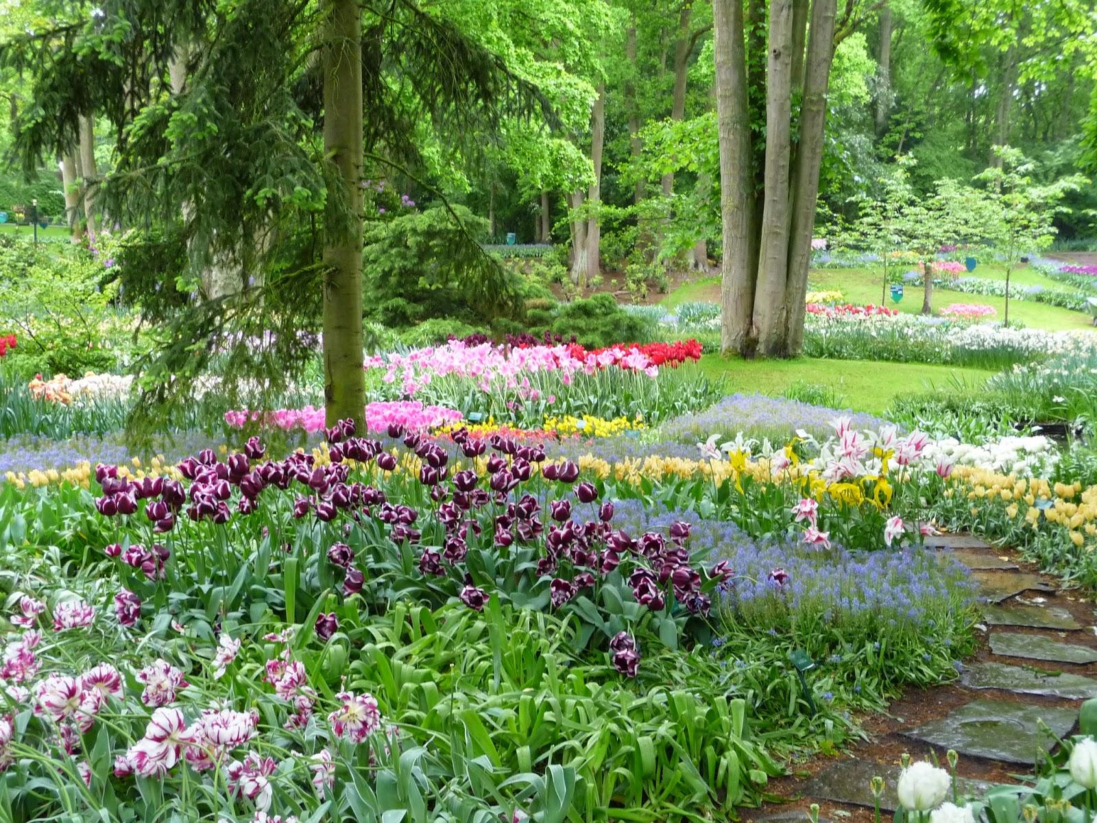 Small Town Oil Wife Keukenhof The Tulip Gardens In Holland