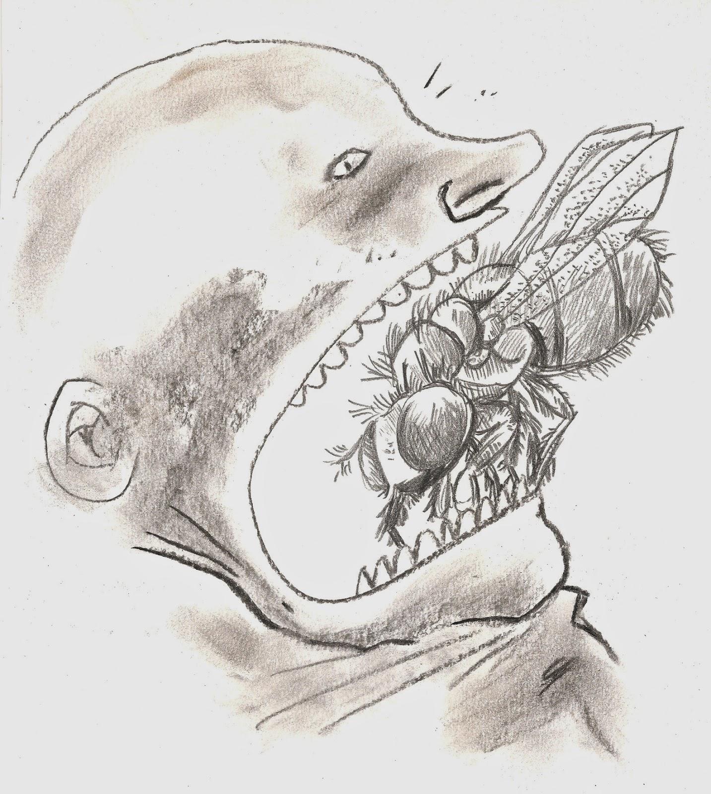 andré barroso desenho em boca aberta entra mosca