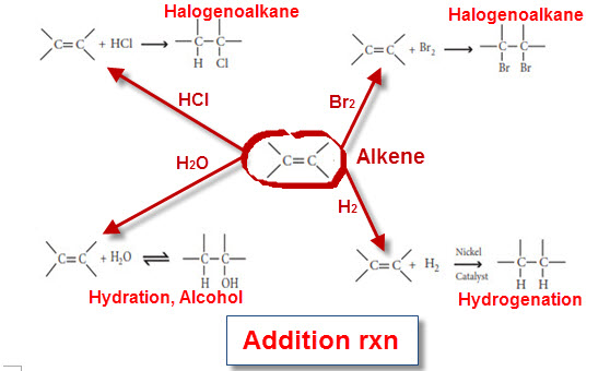 rates of reaction of the halogenoalkanes essay It also covers the study of properties of the elements, basic electrochemistry, energetics, reaction rates and equilibria, and includes an introductory course in organic chemistry the role of chemistry in modern society is emphasized and environmental hazards such.