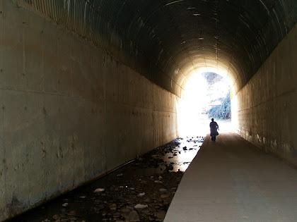 Pas de vianants sota l'Eix del Llobregat