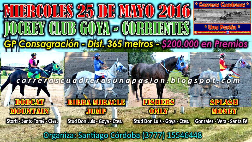 GOYA - 25.05.2016 - CLASICO 365