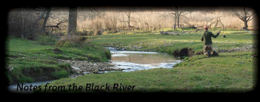 Notes from the Black River