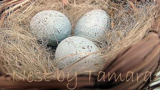 Nest by Tamara