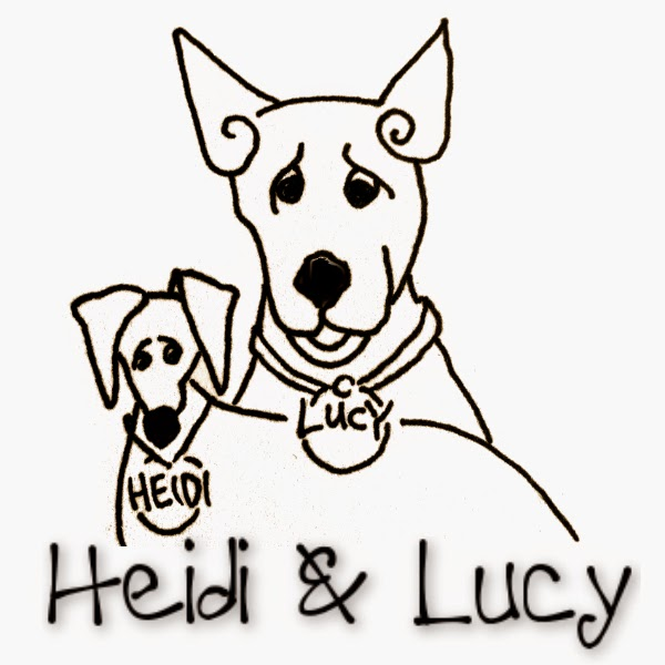 Shop Heidi & Lucy All-Vegan Jewelry and Other Adornments