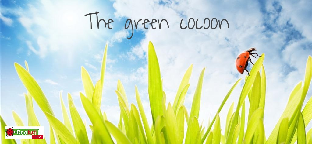 The green cocoon