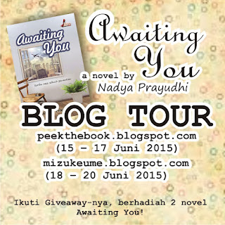 Blog Tour + Giveaway Awaiting You