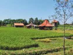 Hotel Murah di Sinduadi Jogja - Alamanda Villa's & Bed & Breakfast