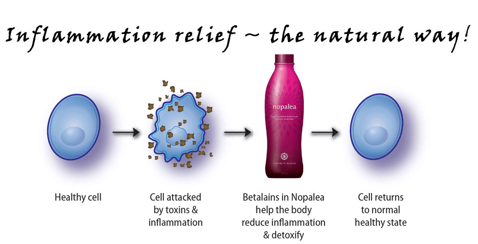 Inflammation relief ~ the natural way!