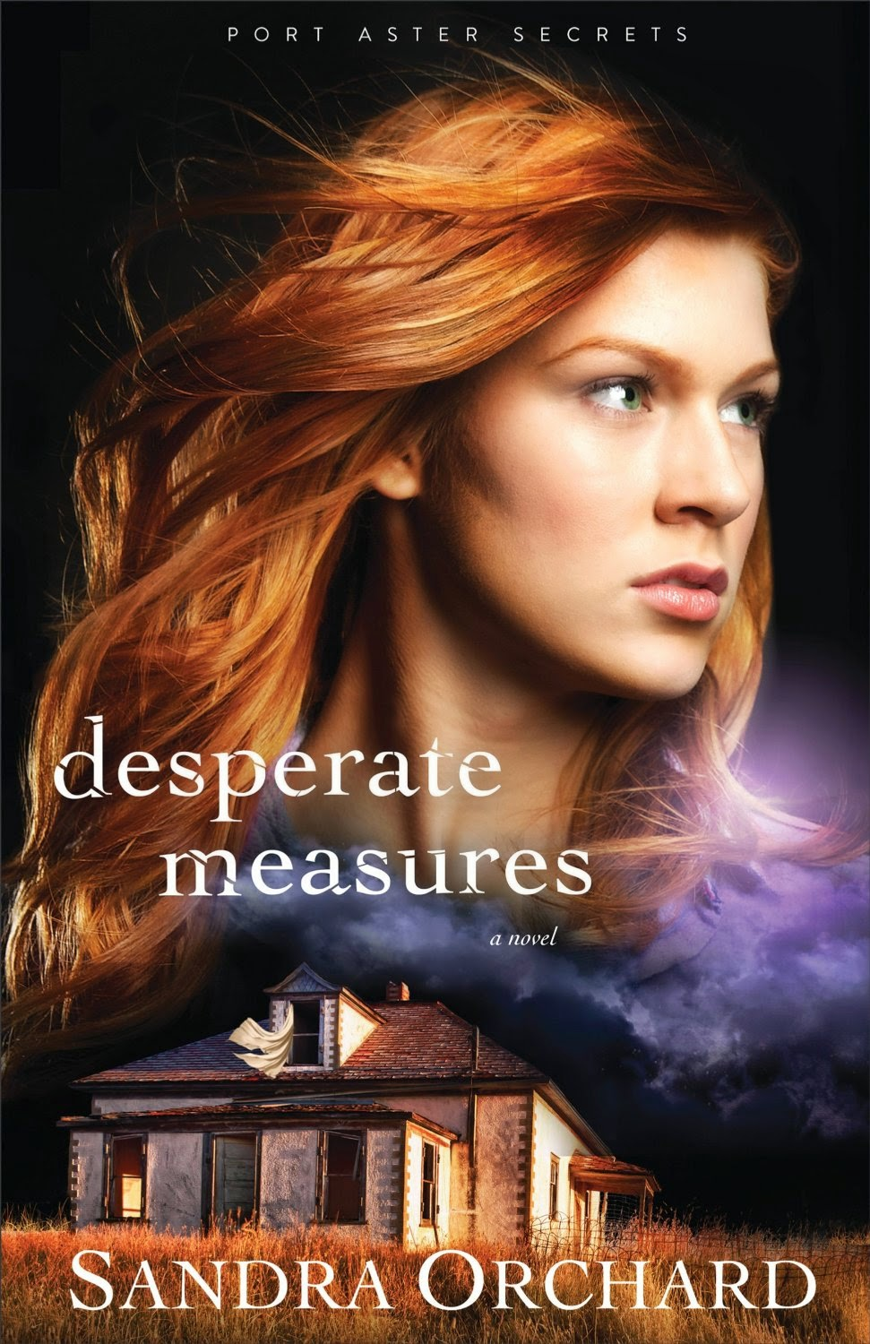 http://www.amazon.com/Desperate-Measures-Port-Aster-Secrets-ebook/dp/B00QMSCJ1M/ref=sr_1_1?s=books&ie=UTF8&qid=1434556314&sr=1-1&keywords=desperate+measures+sandra+orchard