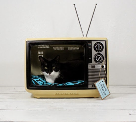 cat on TV with DIY bed from old television