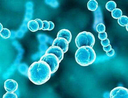 Jenis Macam Macam Penyakit Genetika
