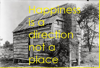 Happiness is a direction not a place