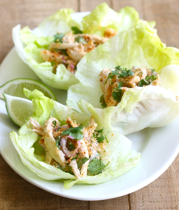 Toasted Coconut & Chicken Lettuce Wrap recipe by SeasonWithSpice.com