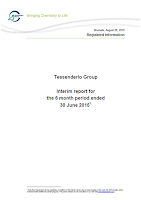 Tessenderlo, Q2, 2015, front page, report