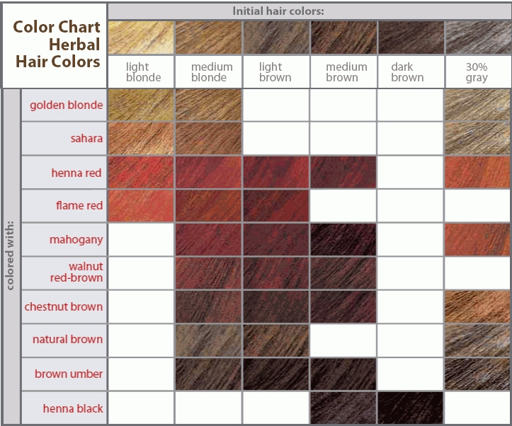 Brown Hair Color Shades  How To Choose The Best Hair In Shades Of Hair Color