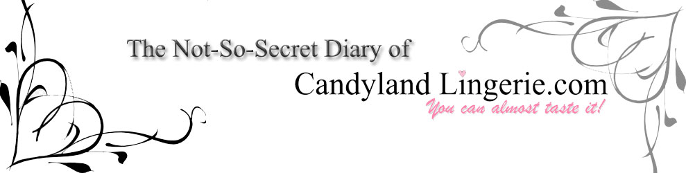 The Not-So-Secret Diary of CandylandLingerie.com