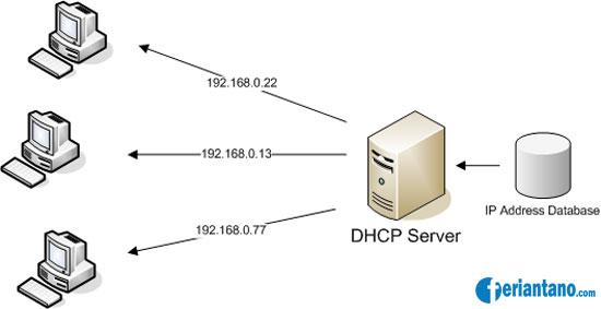 dhcp client server: