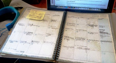 http://www.tropicanagardens.com/home/images/stories/carolyn%20planner.jpg